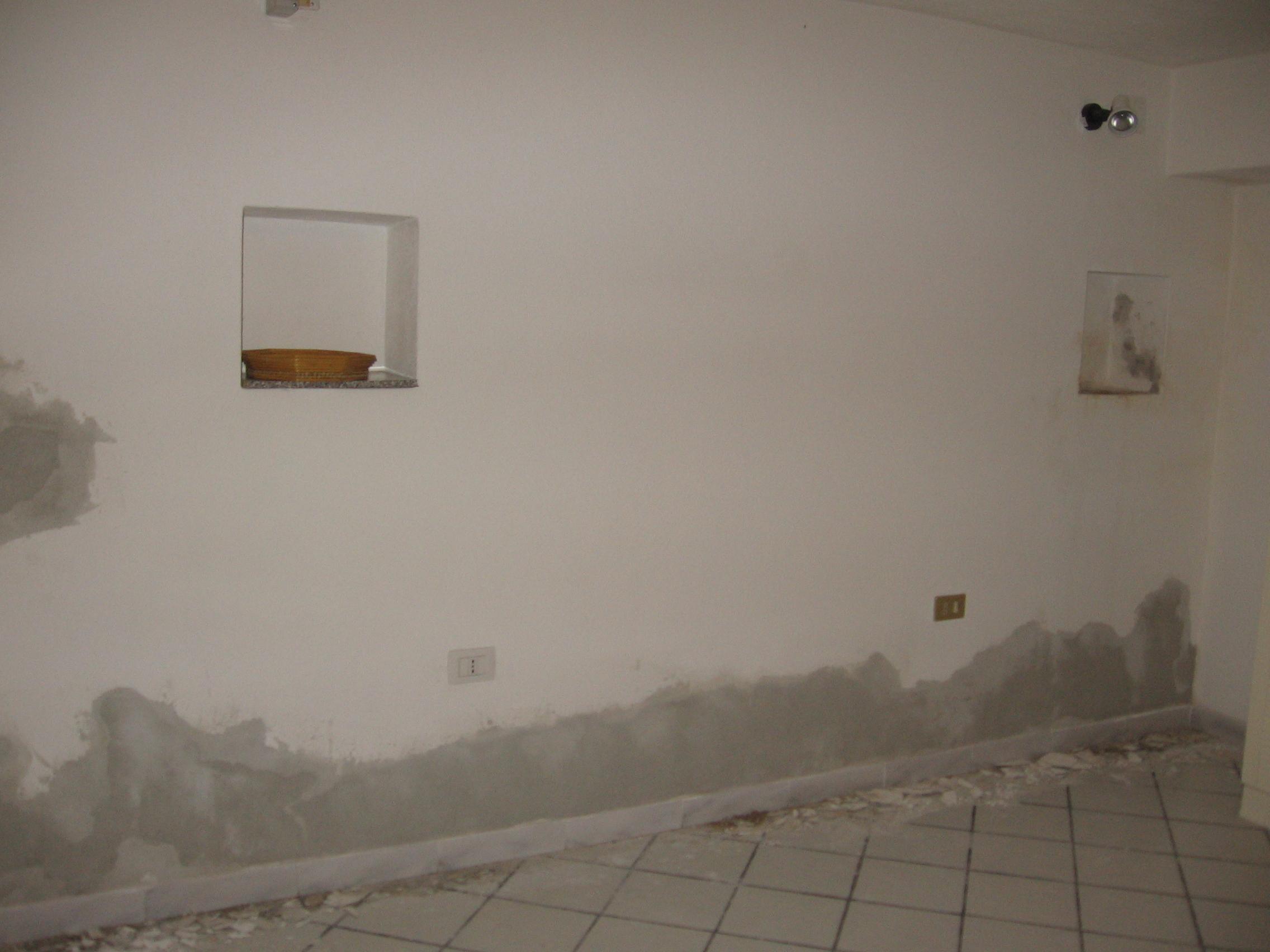 Rasare muro esterno colori per dipingere sulla pelle for Colori per muri